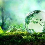Powrót do rzeczywistości, czyli rozwój wydarzeń po COP21