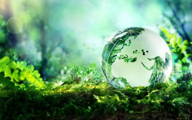 DZP wyróżnione w zestawieniu najlepszych kancelarii prawnych świadczących usługi w zakresie OZE, ochrony środowiska i energetyki