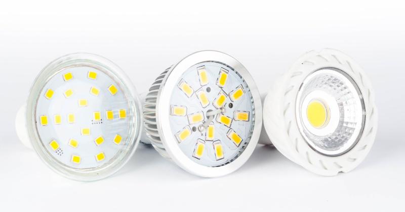 Led bulbs on white background