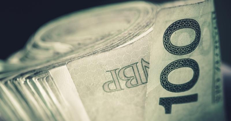 Rolled Polish Zloty Banknotes. Hundred Zlotys Bills Closeup.