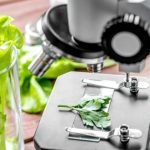 Czy certyfikat ekologiczny będzie częściej ograniczany?