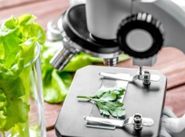 concept healthy food inspection herbs in laboratory