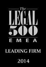 L500 2014 leading firm