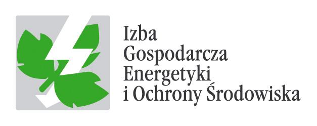 IGEOS logo